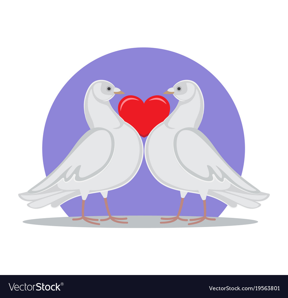 Doves Holding Red Heart Symbol Love By Neck Vector Image