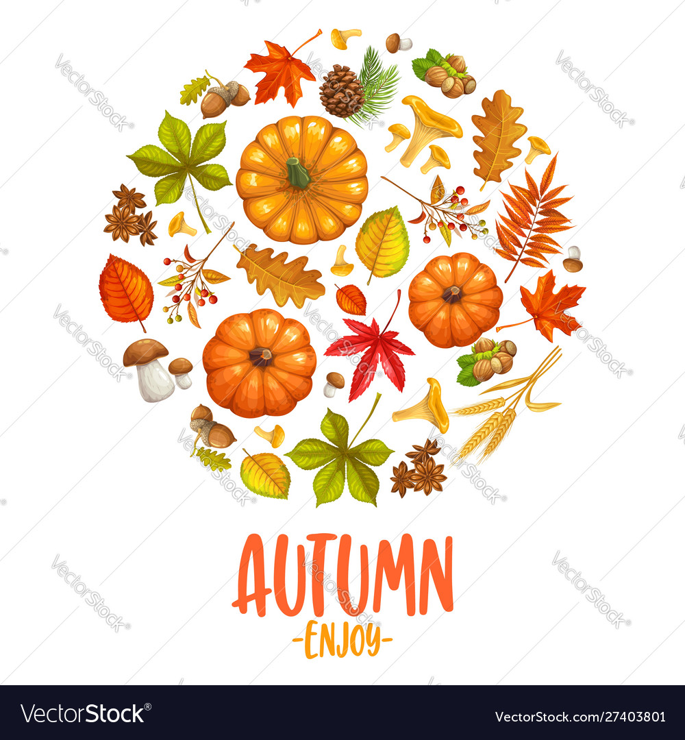 Fall banner with autumn leaves