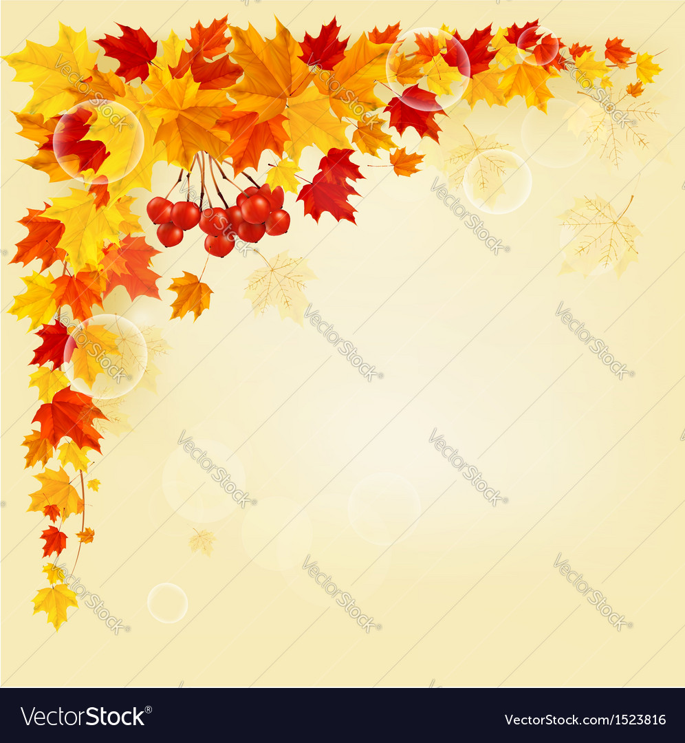 Autumn background with colorful leaves Back to