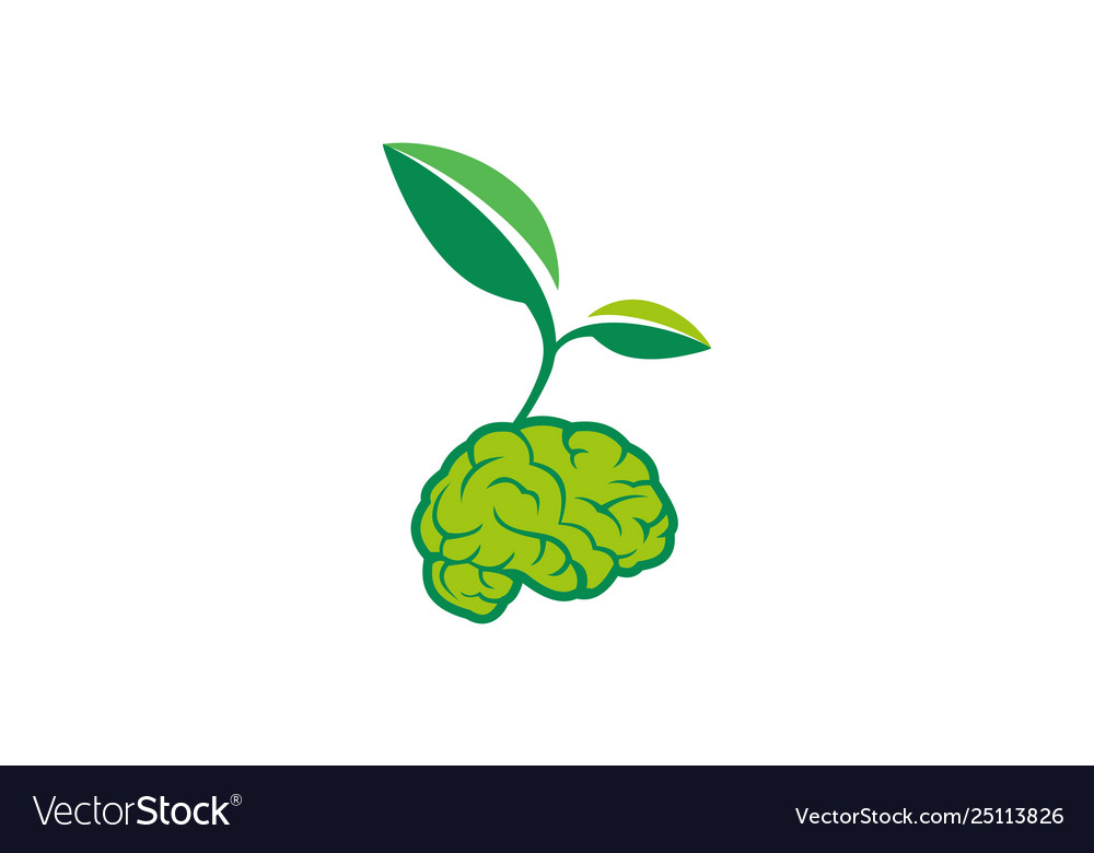 Brain Nature Plant Logo Icon Concept Royalty Free Vector