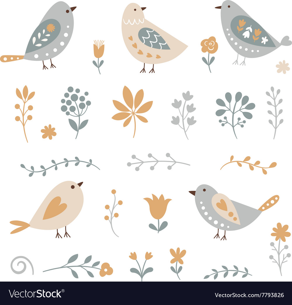 Set graphic floral elements and birds