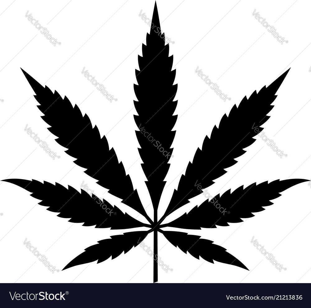 Marijuana Or Cannabis Leaf Royalty Free Vector Image