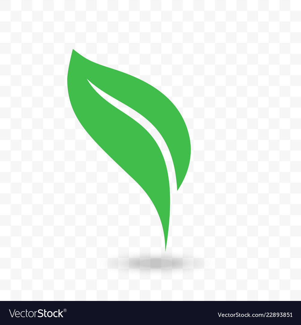 Green leaf vegan bio or eco icon