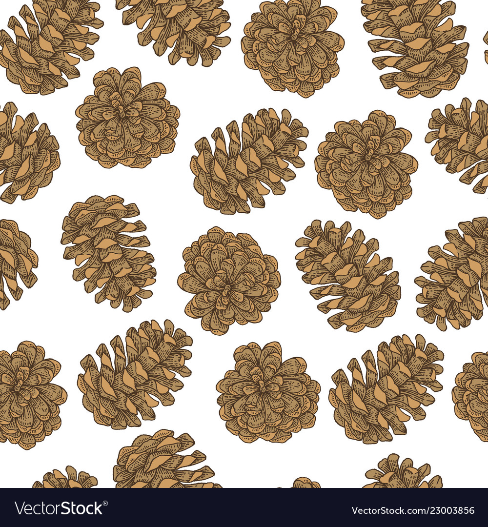 Seamless pattern with hand drawn pine cones