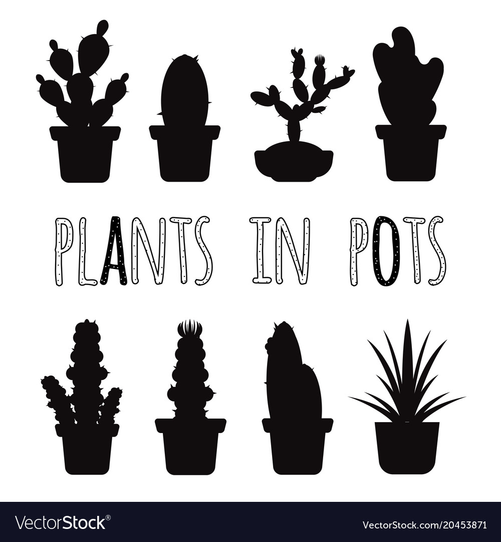 Home plants in pots black silhouettes set