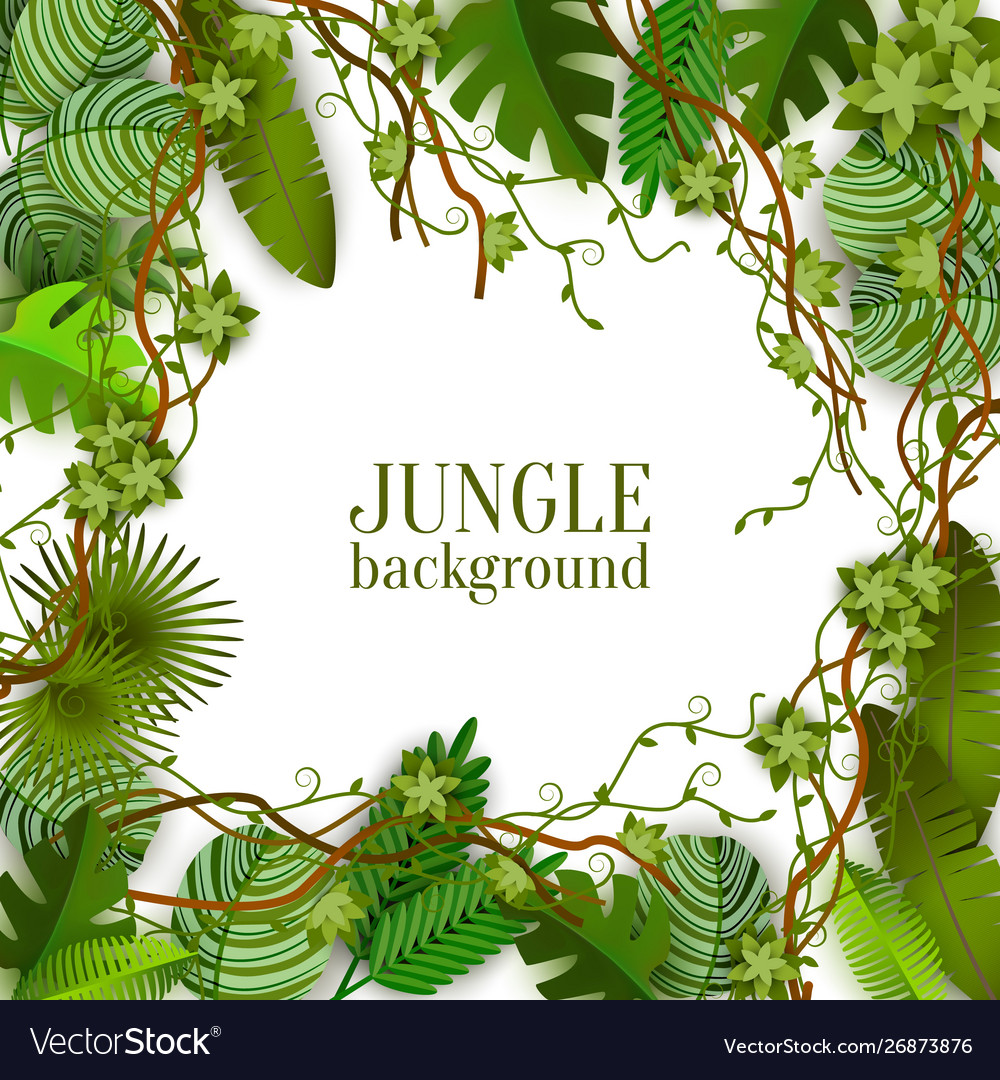 Tropical jungle lianas and palms banner with space