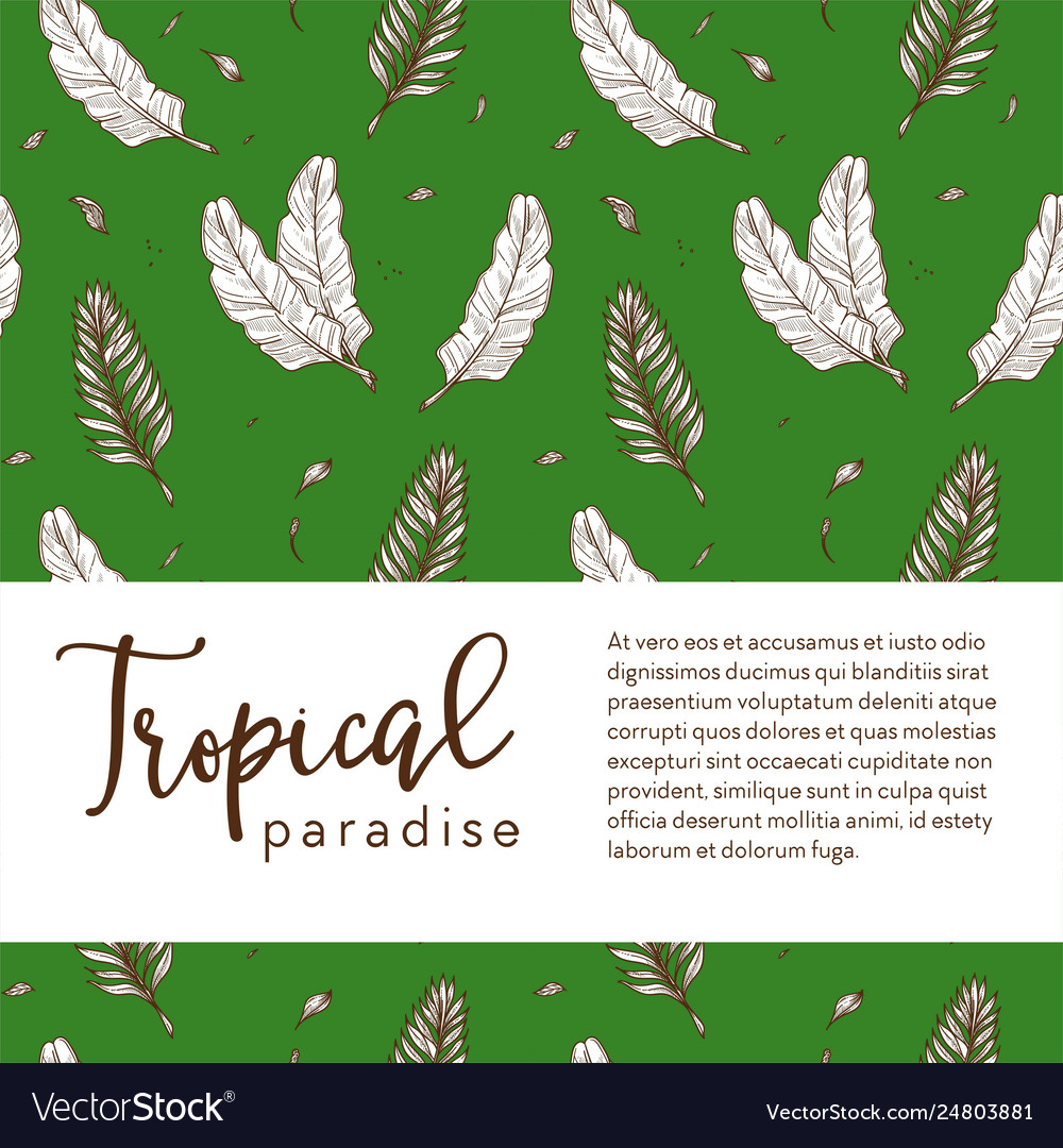 Tropical paradise banner palm leaves sketch