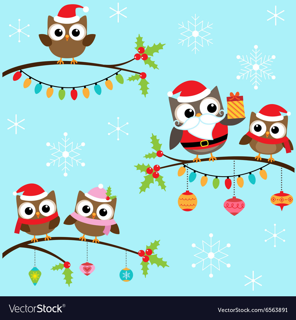 Christmas owls on branches vector image