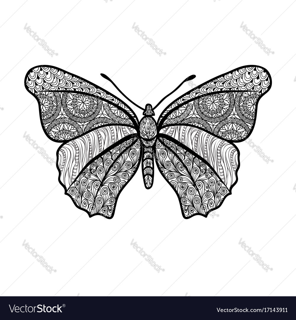 Butterfly isolated summer holiday floral element vector image