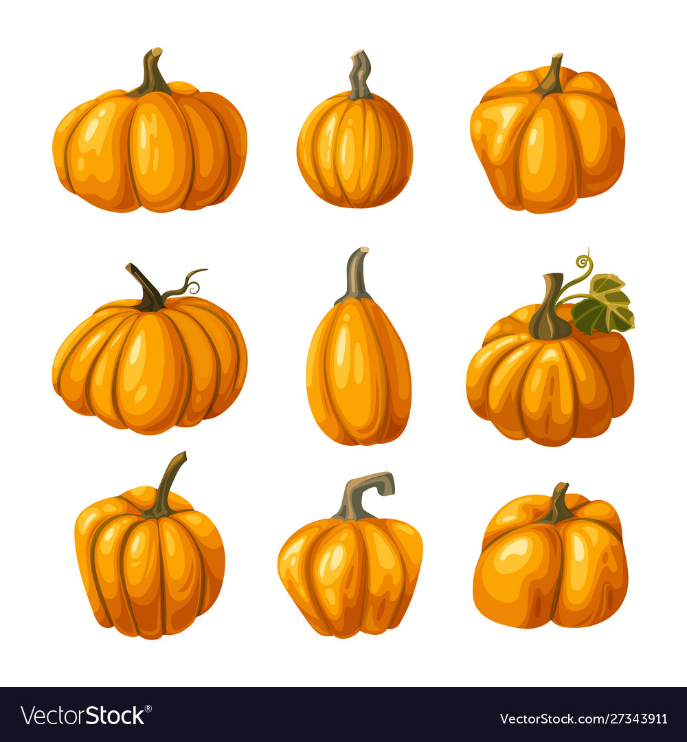Pumpkin thanksgiving and halloween icons