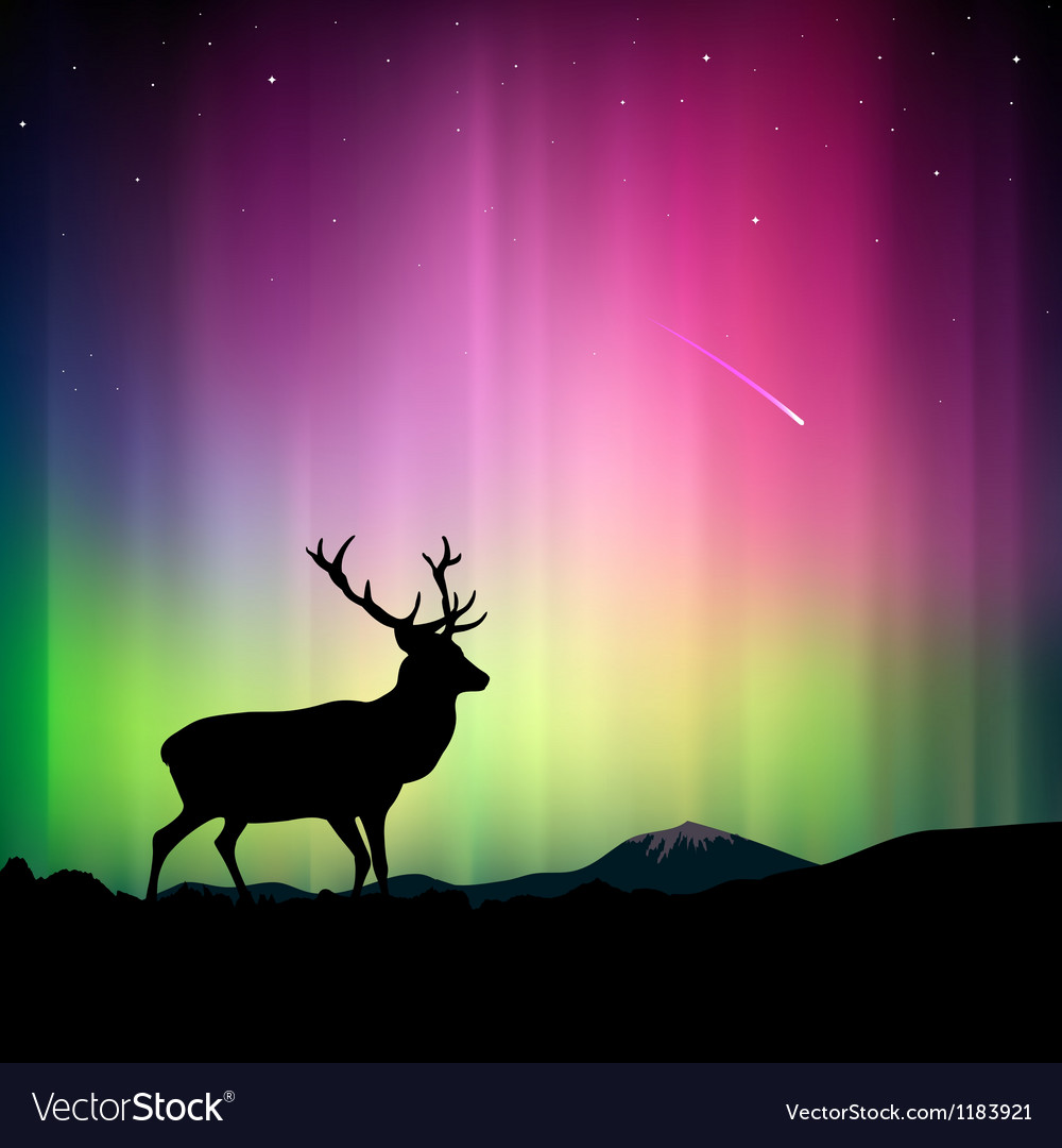 Northern lights with a deer in the foreground vector image