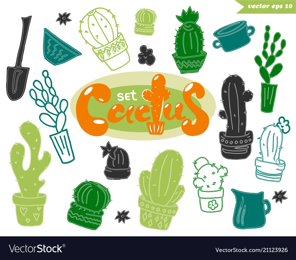 Funny cactus set