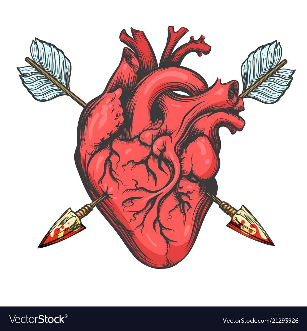 Heart pierced two arrows