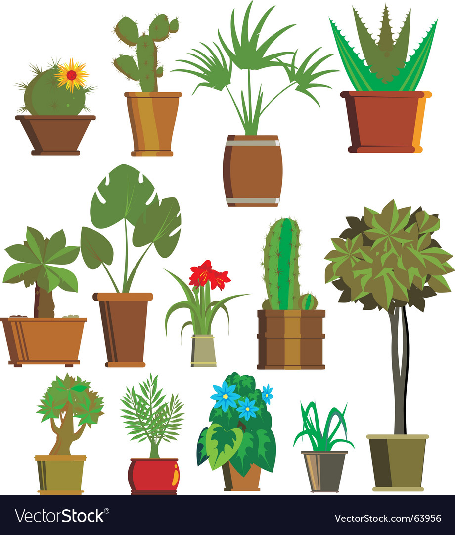 plants royalty free vector image vectorstock rh vectorstock com vector plates ftb vector planes