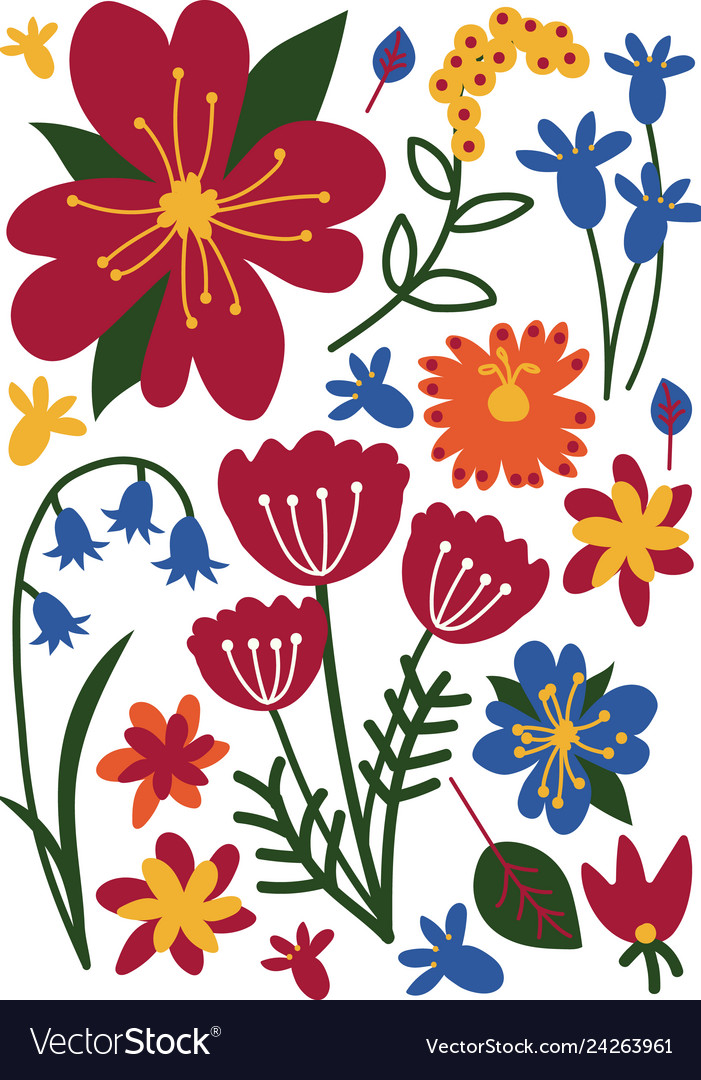 Colorful wild or garden blooming flowers floral