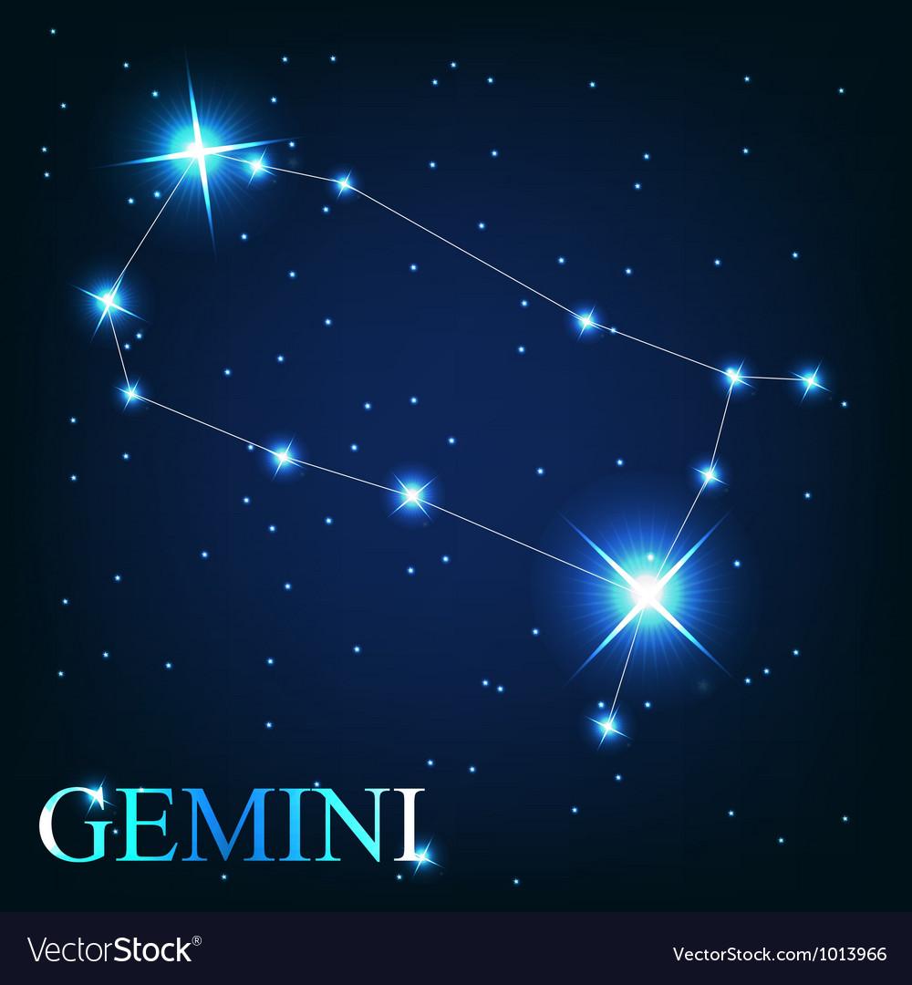 The gemini zodiac sign of the beautiful bright vector image