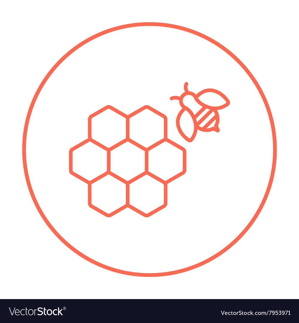 Honeycomb and bee line icon