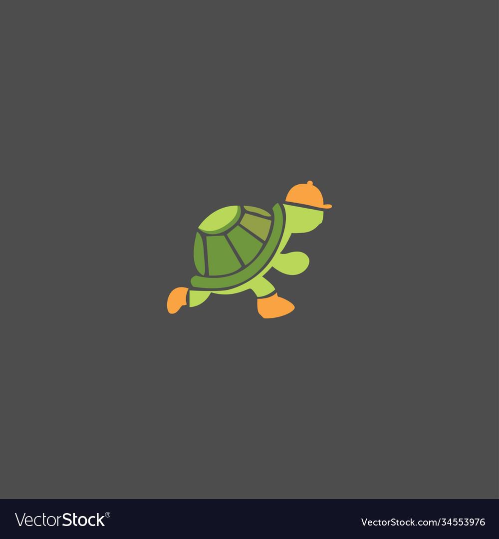 Turtle run on black background