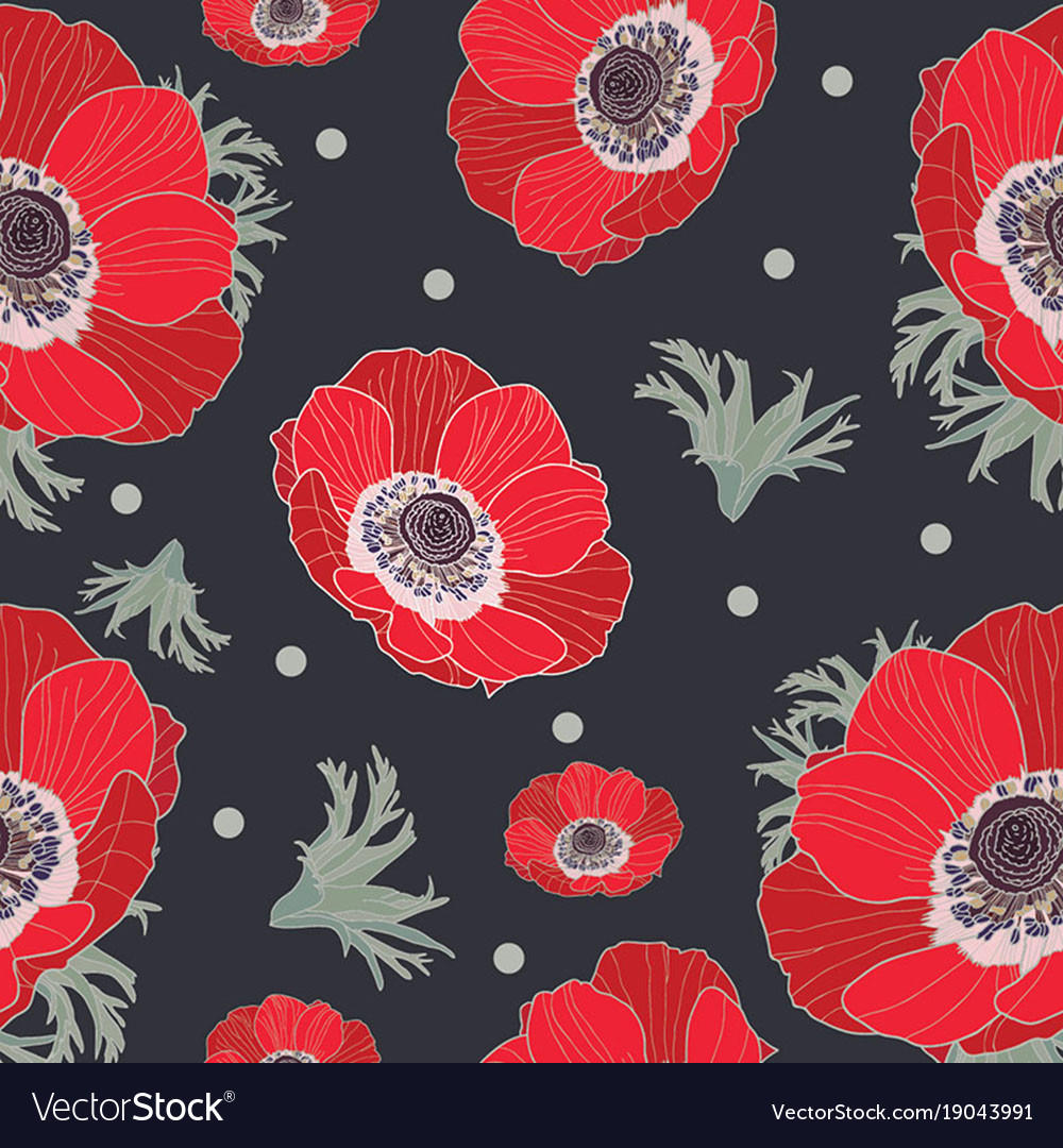 Anemone flowers vector image