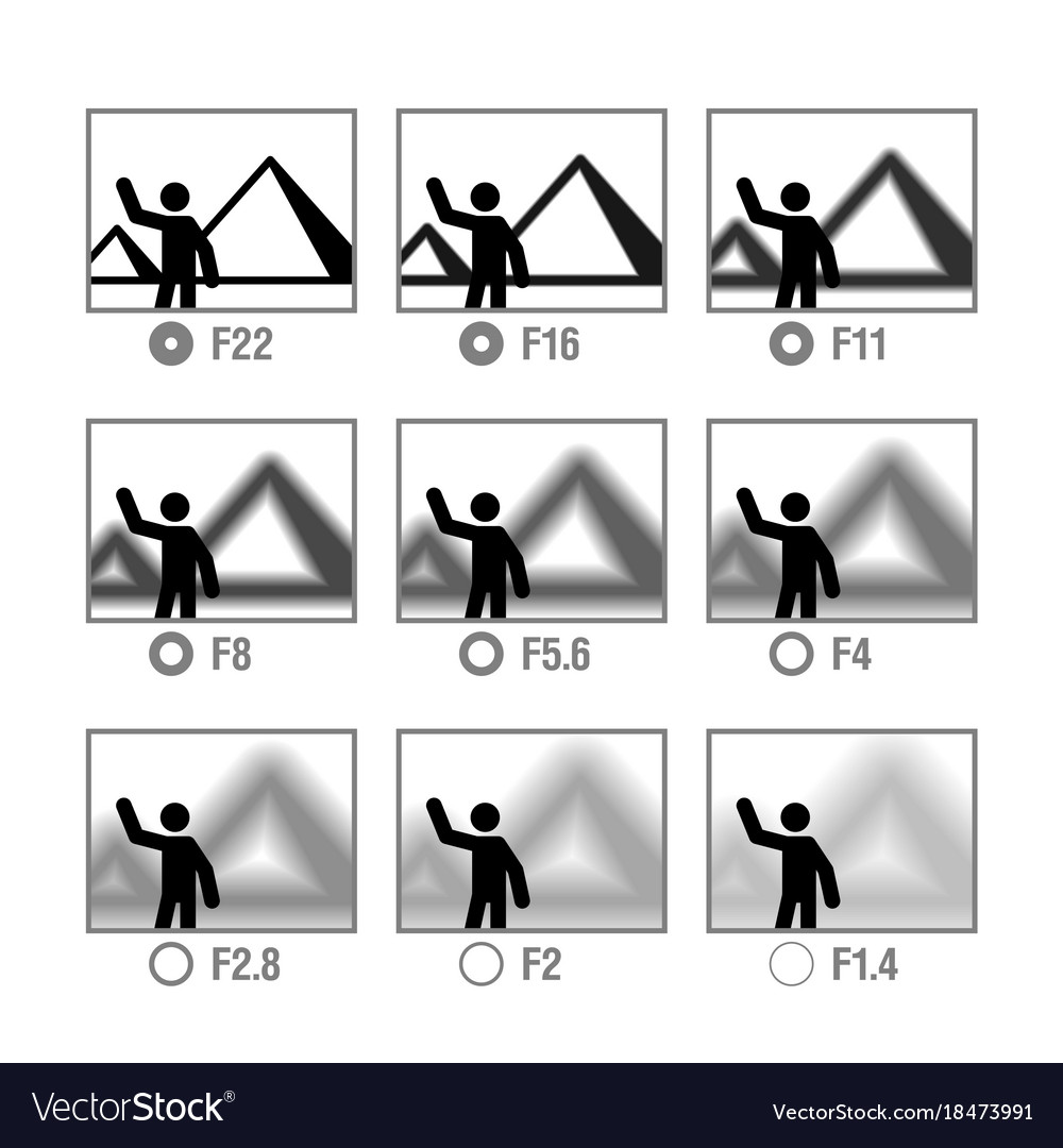 Photography cheat sheet in icons aperture vector image