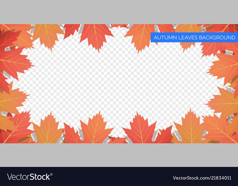 Autumn leaves frame on transparent background