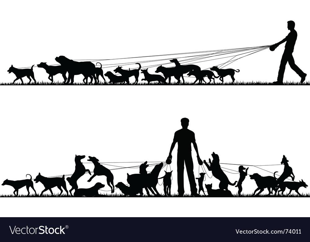 Dog walker vector image