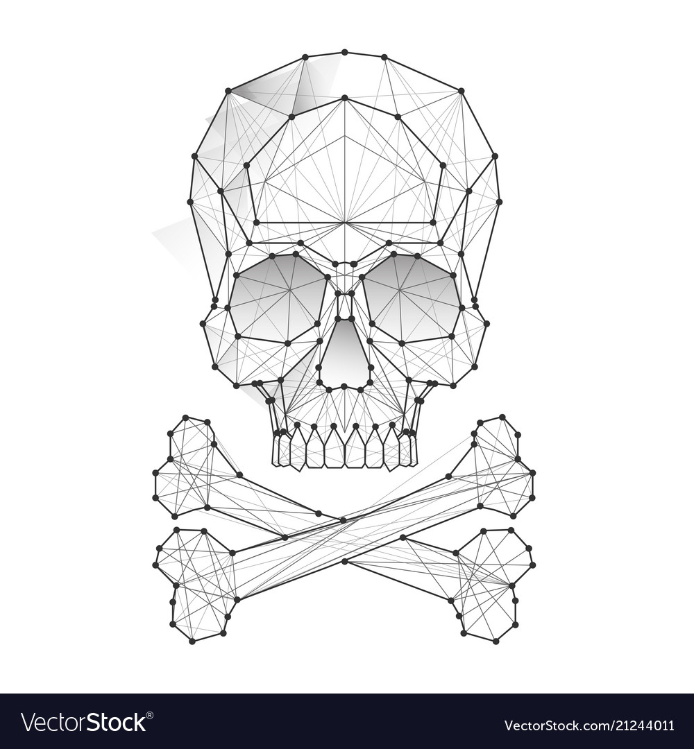 Polygonal skull and bones vector image
