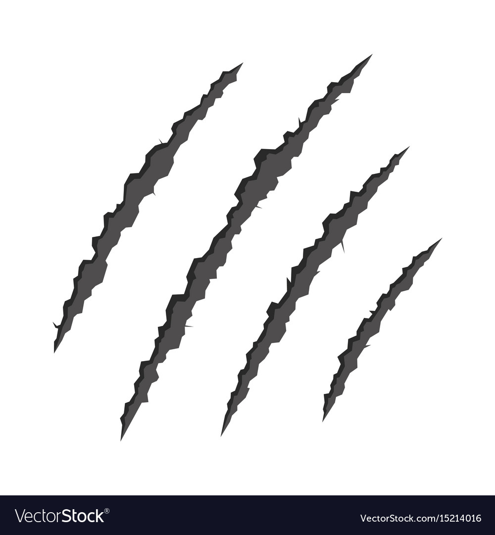 Claws scratching animal vector image