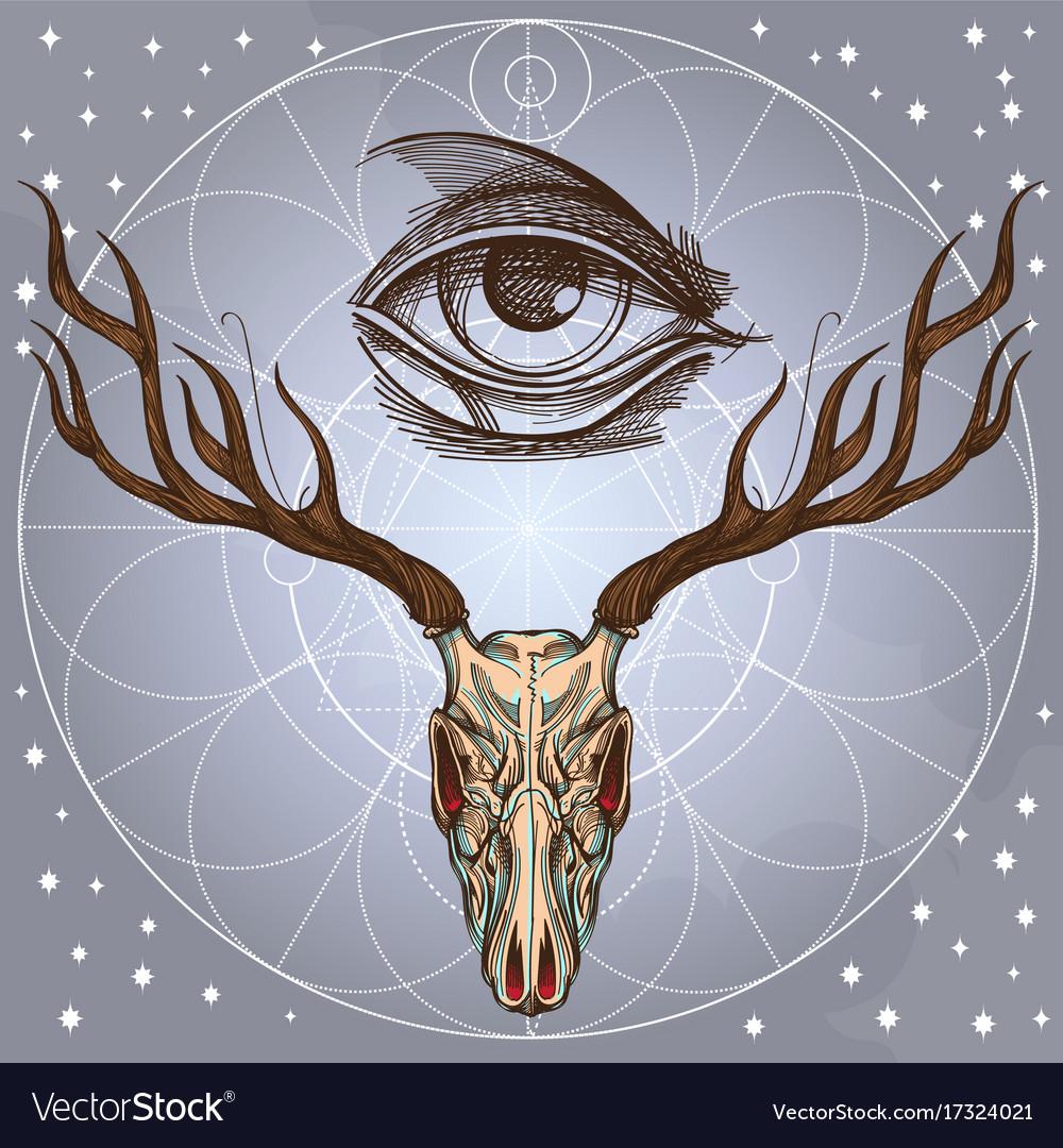 Sketch of deer skull and all seeing eye on gray vector image