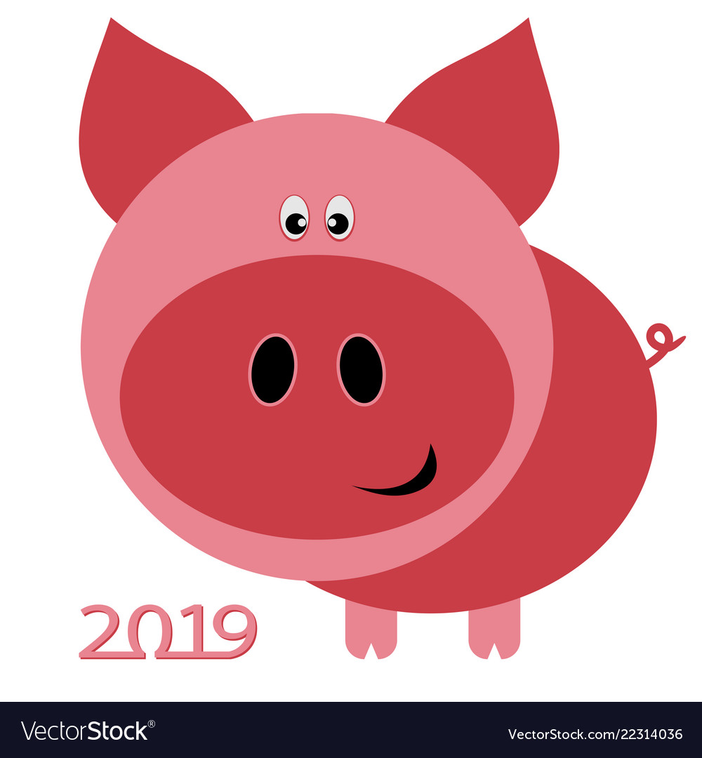 Chinese new year card for 2019 with pig on white