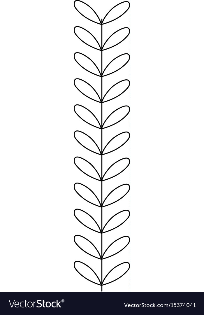 Line rustic branch with leaves design vector image
