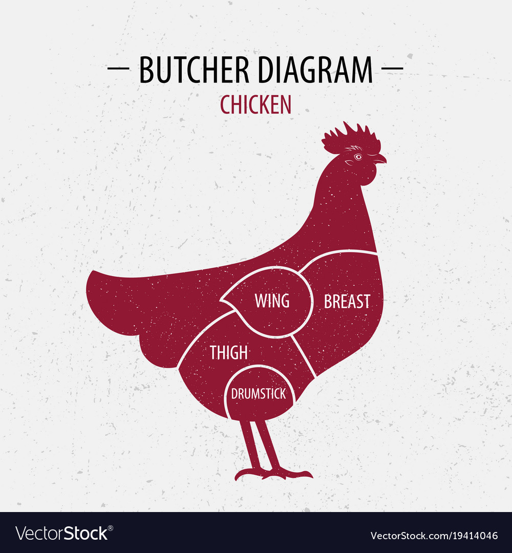Chicken Butcher Diagram Cut Excellent Electrical Wiring Pig Of Poster Royalty Free Vector Rh Vectorstock Com Cuts Pork