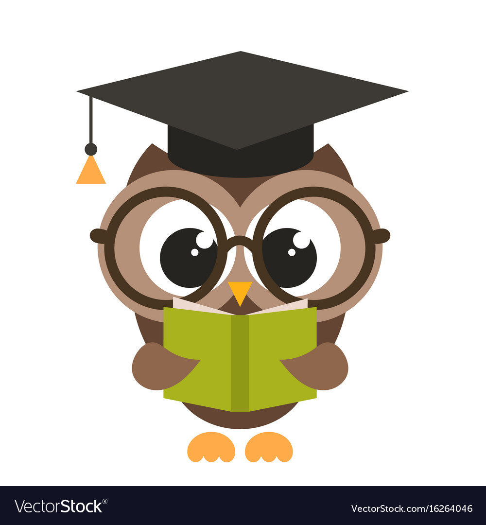 Cute brown owl with book vector image