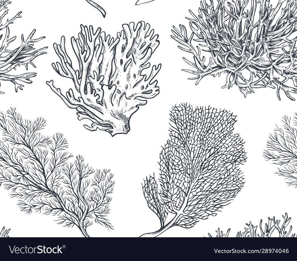 Seamless pattern with hand drawn ocean
