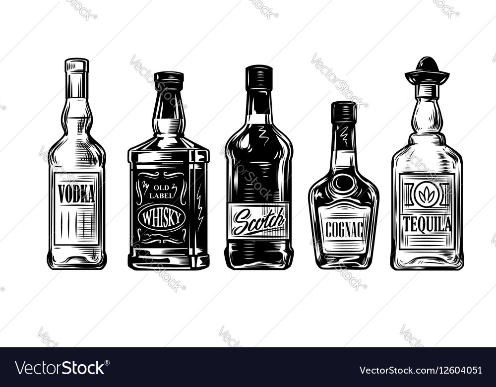 Bottles of alcohol icon vector image