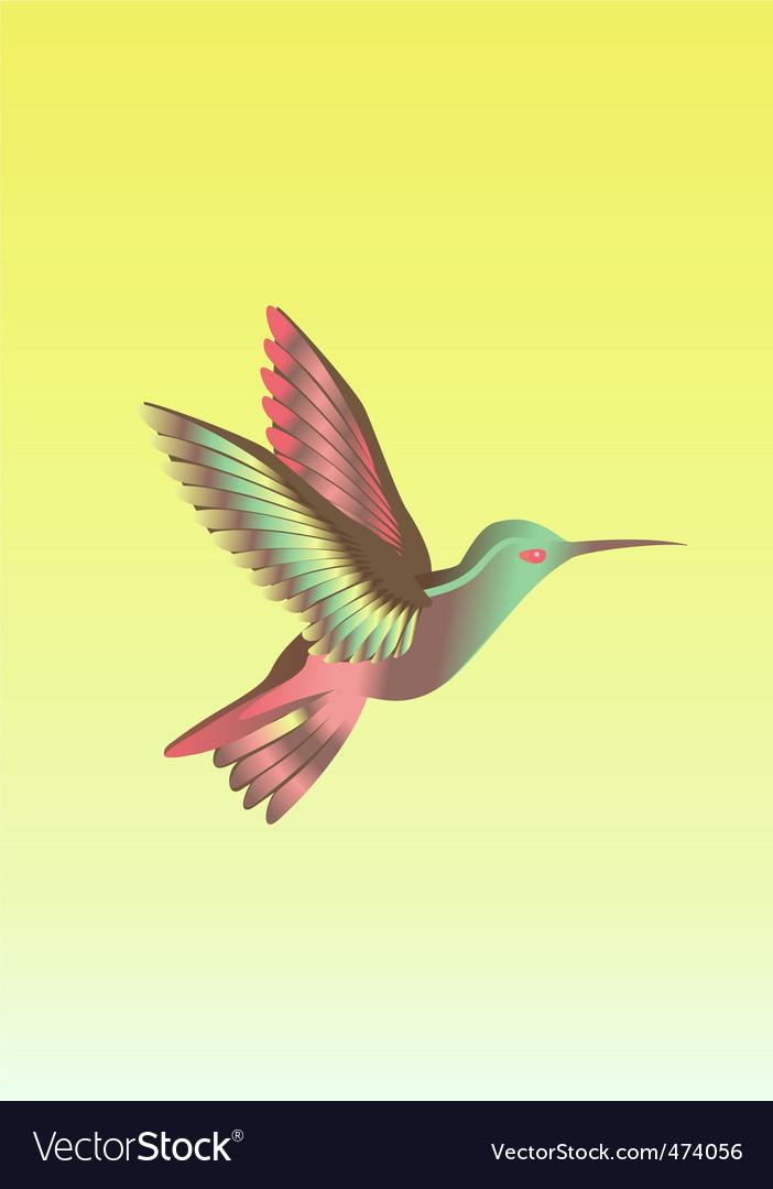 Calibri bird