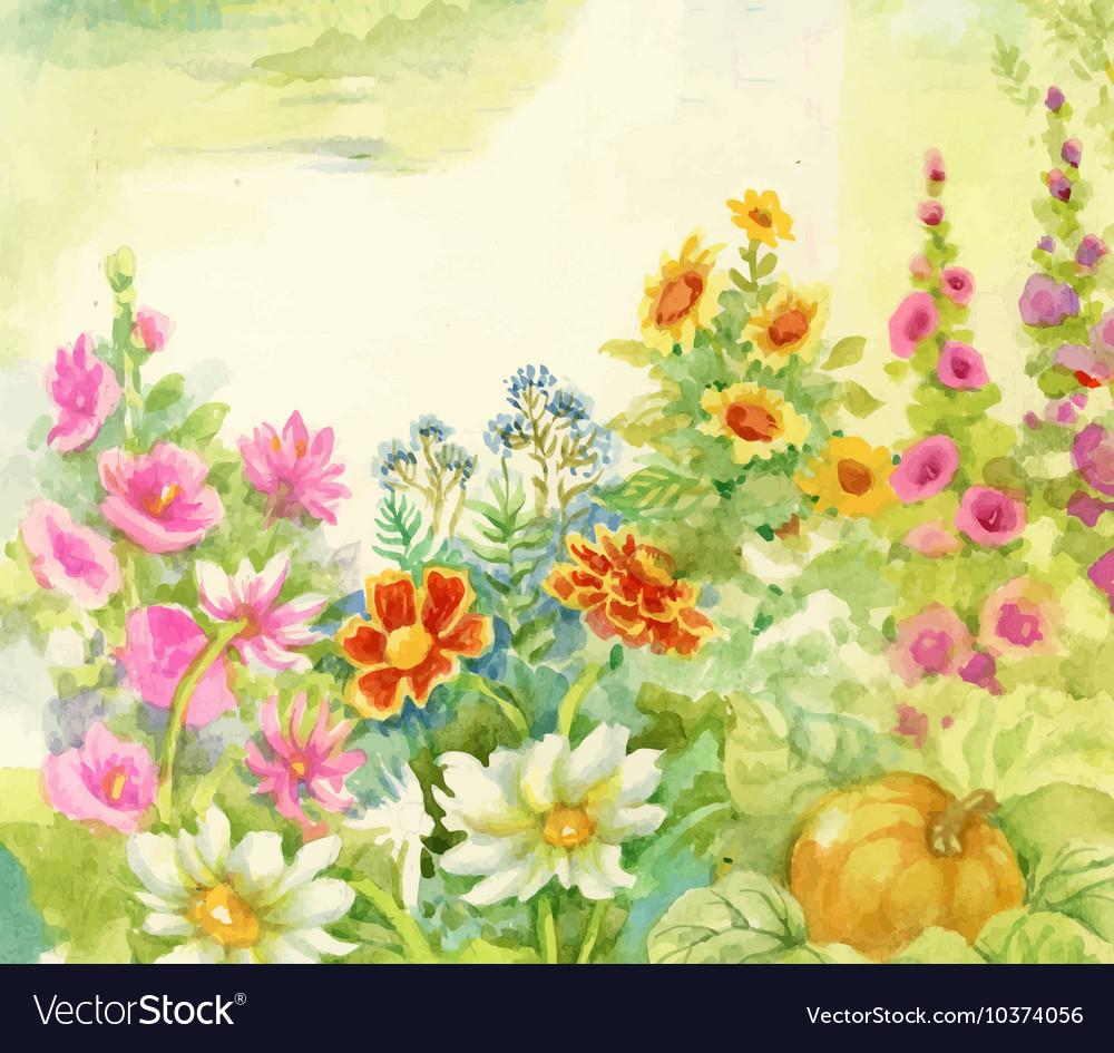 Watercolor Summer Blooming Flowers Royalty Free Vector Image