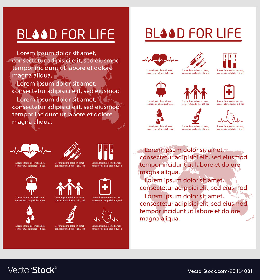 blood donor flyer design template royalty free vector image