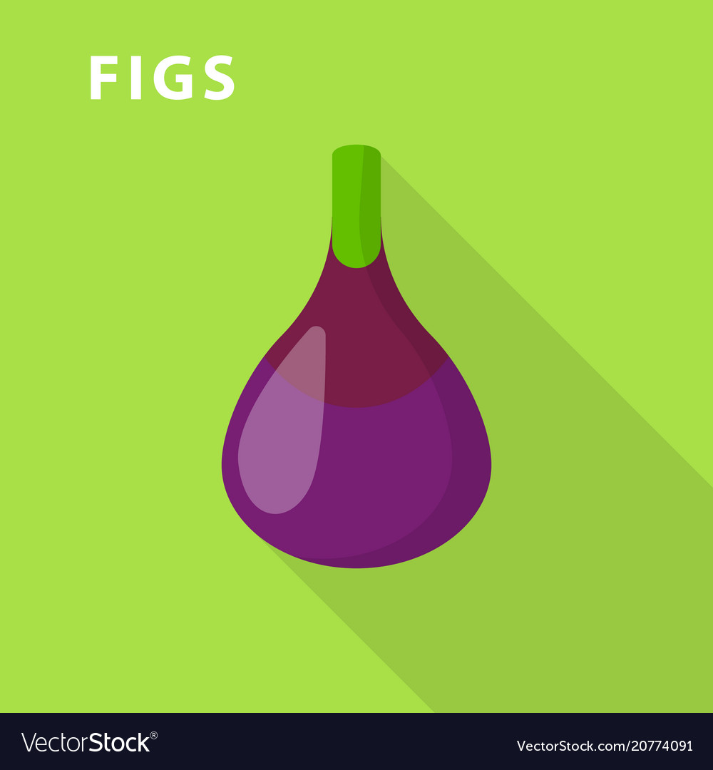 Figs icon flat style
