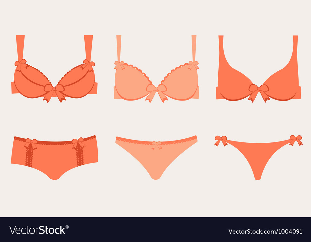 Lingerie collection vector image