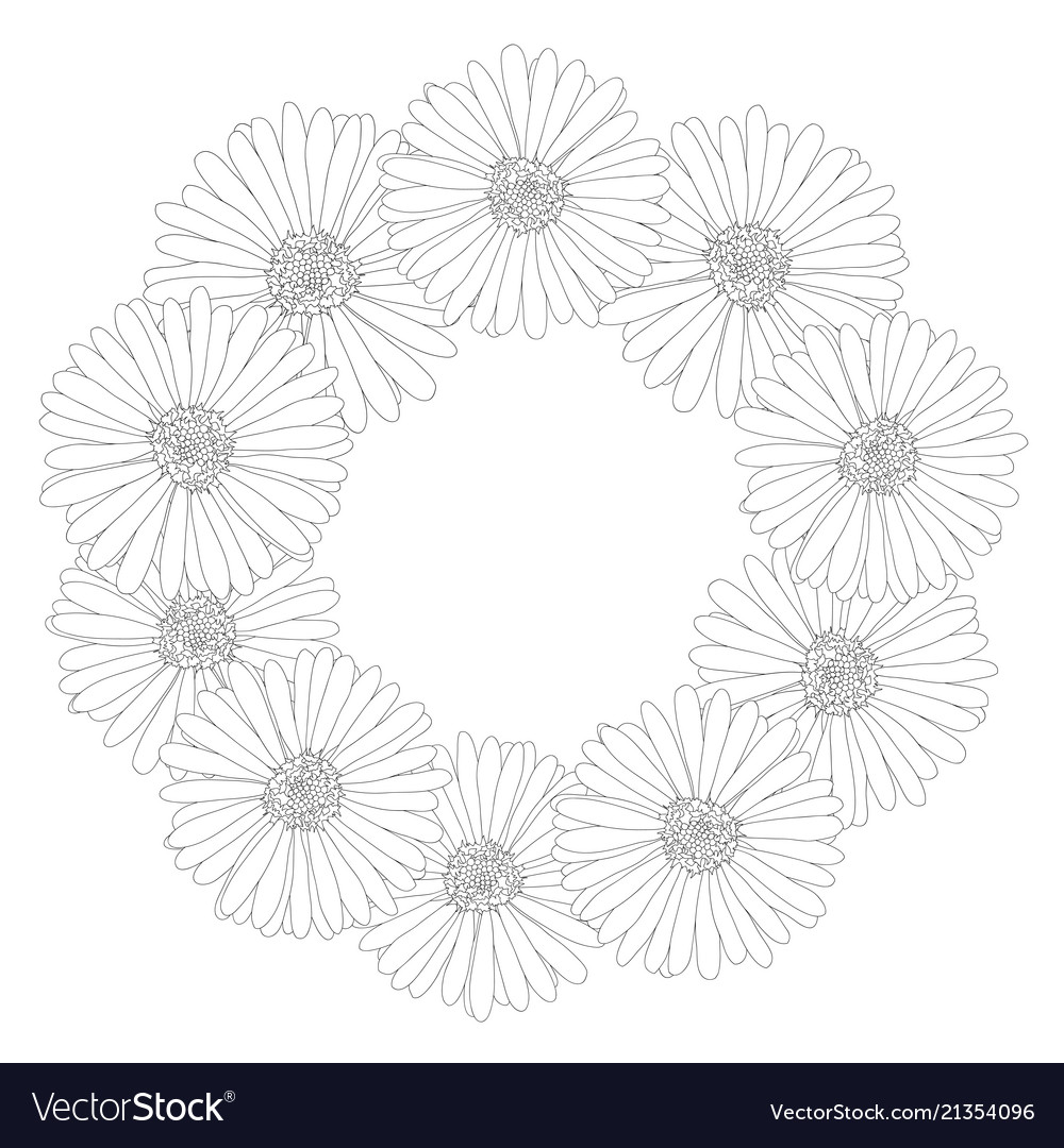 Aster daisy flower outline wreath