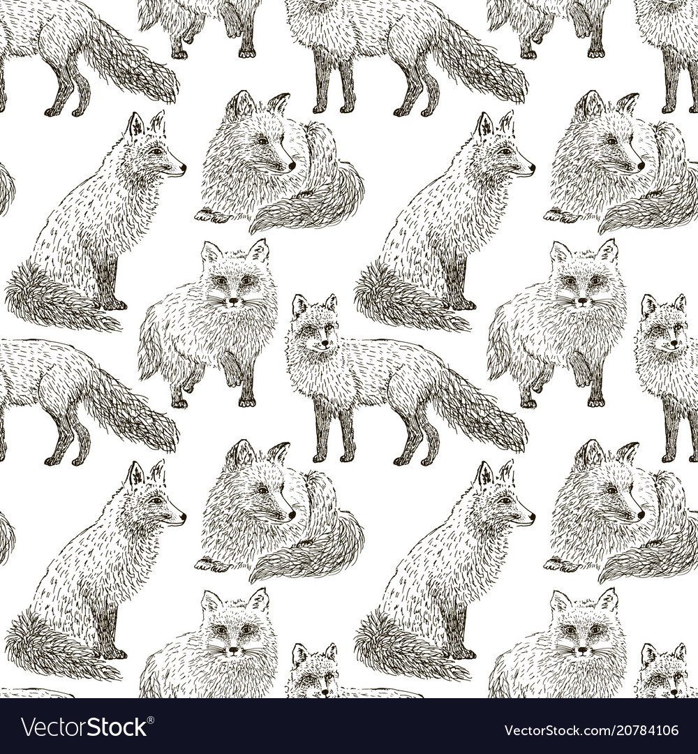 Fox seamless pattern sketch hand drawn