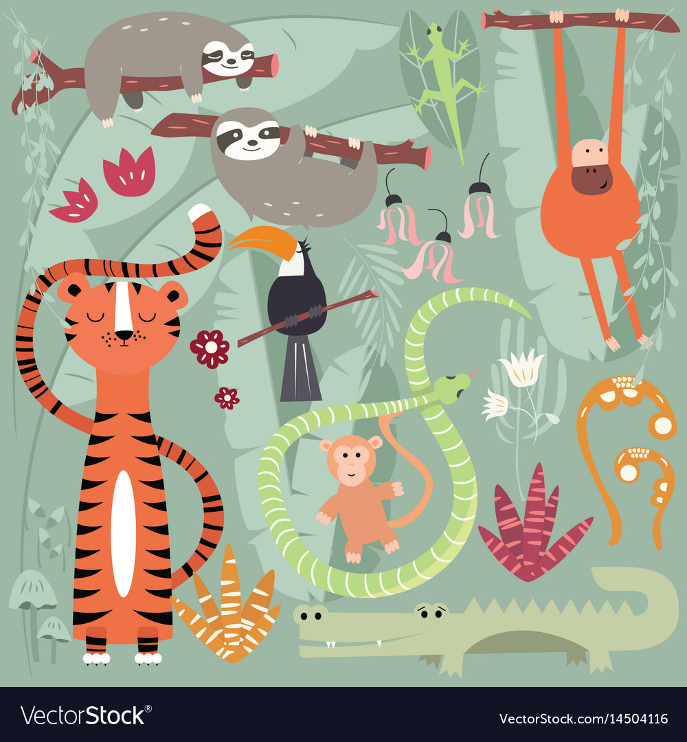 Collection of cute rain forest animals tiger
