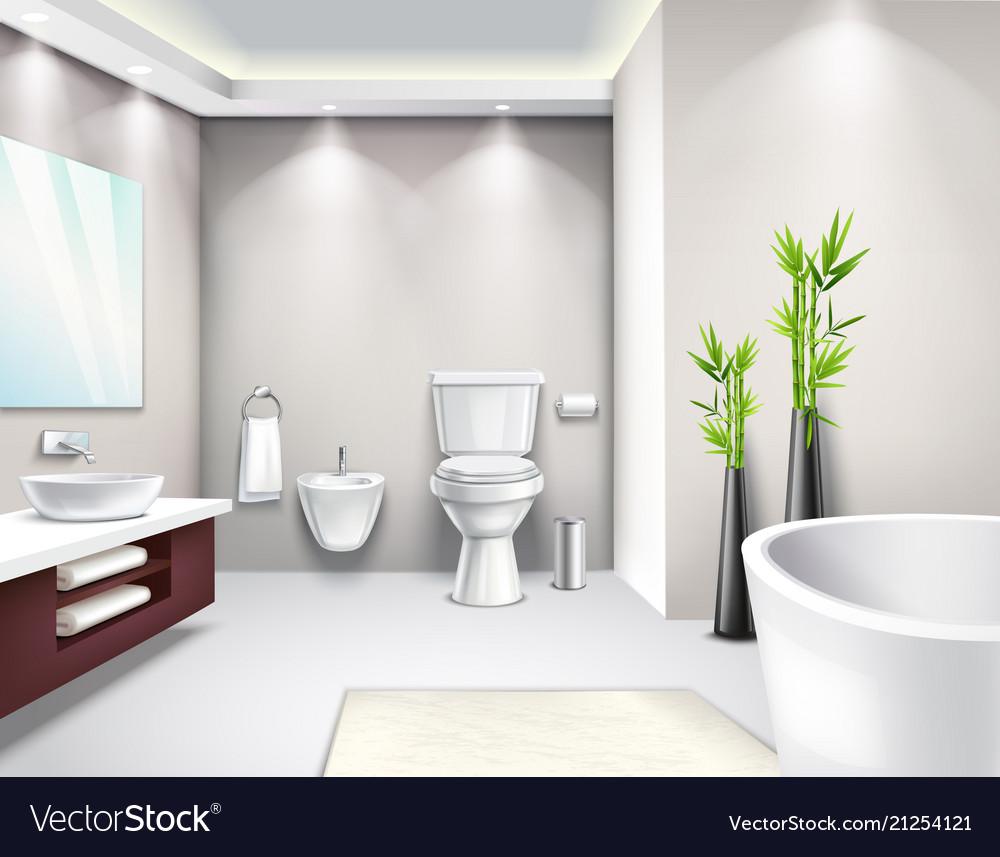 Luxury bathroom interior realistic design Vector Image