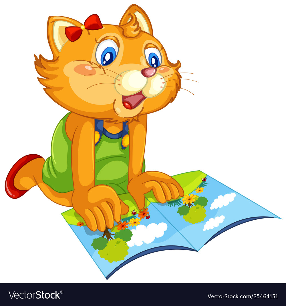 A cat reading book