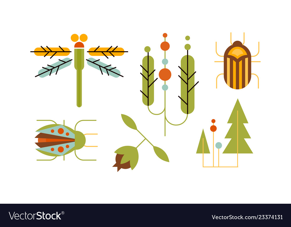 Collection insects and trees nature and