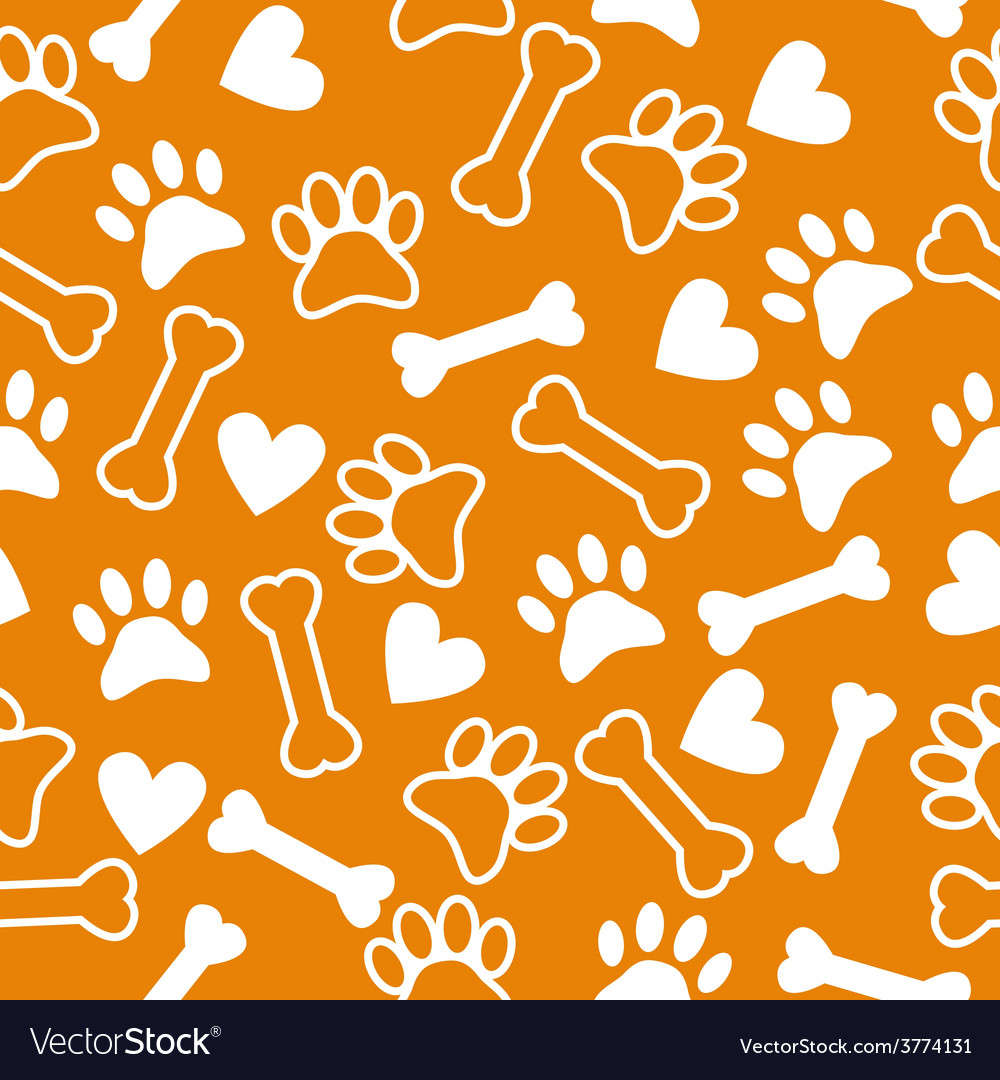 Seamless pattern with dog paw and print bone vector image
