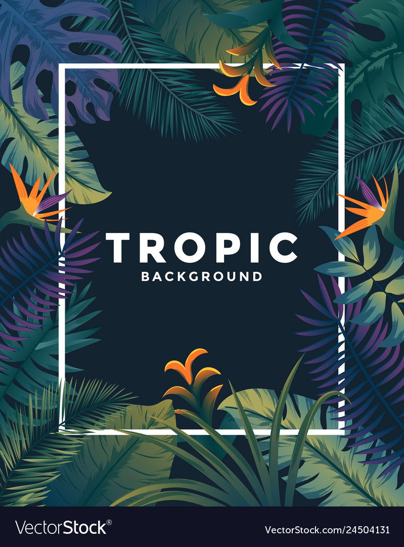 Tropical poster with frame