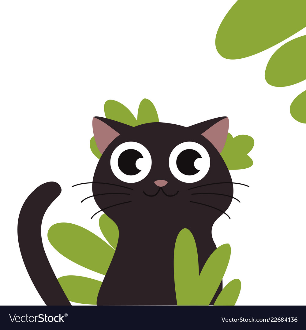 Black Cat Head Face Silhouette Royalty Free Vector Image