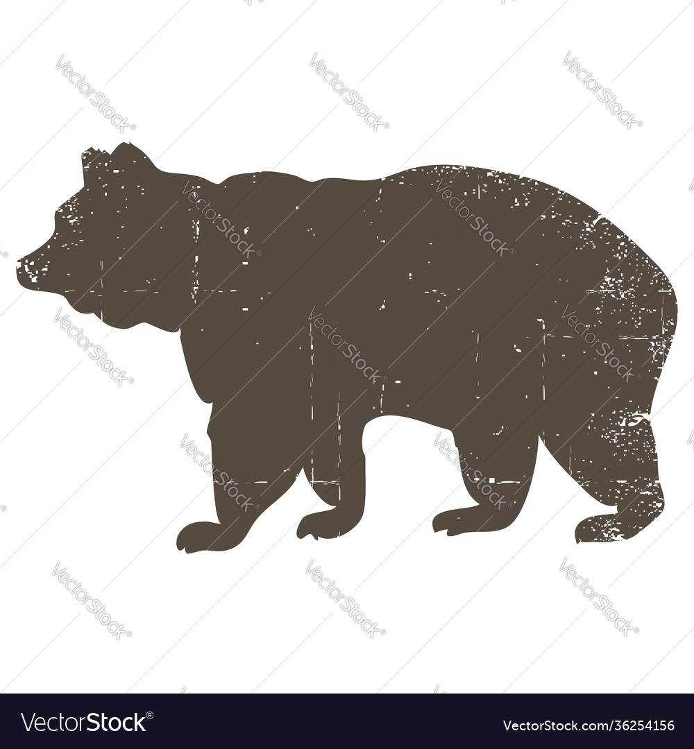 Bear silhouette with scratched grunge effect